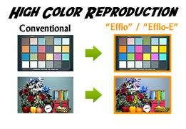 Effio-Example-1.jpg