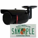 License Plate Cameras